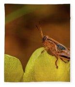 Grasshopper 4600 Fleece Blanket