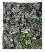 Gray Treefrog - 8522-2 Fleece Blanket
