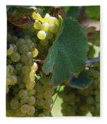 Green Grapes On The Vine 10 Fleece Blanket