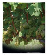 Green Grapes On The Vine 16 Fleece Blanket