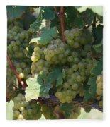 Green Grapes On The Vine 18 Fleece Blanket