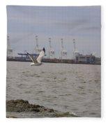 Gull In Flight On New Jersey Bay Fleece Blanket
