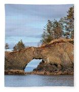 Halibut Cove Rock Formation Kenai Peninsula Alaska Fleece Blanket