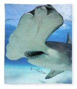 Hammerhead Shark Fleece Blanket