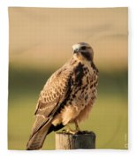 Hawk On The Edge Of A Field Fleece Blanket