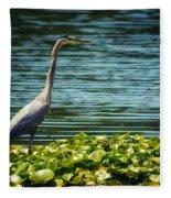 Heron In The Lily Pads Fleece Blanket