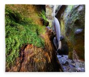 Hidden Falls Sombrio Beach 2 Fleece Blanket