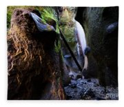 Hidden Falls Sombrio Beach 3 Fleece Blanket