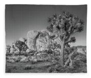 Hidden Valley Rock Fleece Blanket