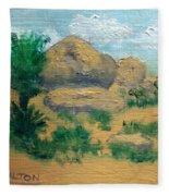 High Desert Rock Garden Fleece Blanket