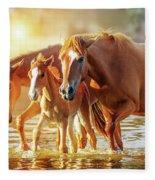 Horse Family Walking In Lake At Sunrise Fleece Blanket