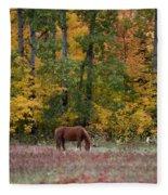 Horse In Fall Fleece Blanket
