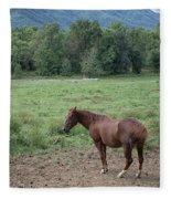 Horse Print 900 Fleece Blanket