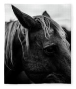 Horse Up-close Fleece Blanket