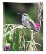 Hummingbird 105 Fleece Blanket
