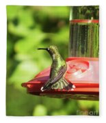Hummingbird 106 Fleece Blanket