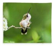 Hummingbird Flexibility Fleece Blanket