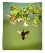Hummingbird Hawk-moth Fleece Blanket