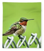 Hummingbird On A Fence Fleece Blanket