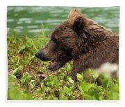 Hungry Bear Fleece Blanket