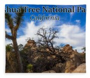 Joshua Tree National Park, California Box Canyon 02 Fleece Blanket