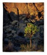 Joushua Sunset 1 Fleece Blanket