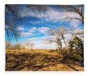 Land Of Enchantment Fleece Blanket