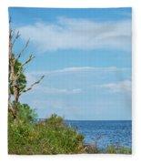 Landscape By The Sound Fleece Blanket