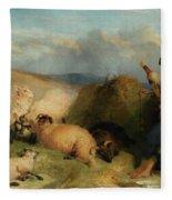 Lassie Herding Sheep Fleece Blanket