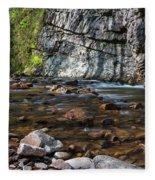 Laurel Fork In Spring I Fleece Blanket