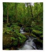 Lee Falls Cascades Fleece Blanket