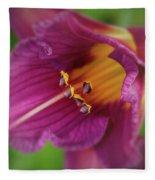 Lilies Fleece Blanket by Allin Sorenson