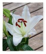 Lily Casa Blanca 1 Fleece Blanket