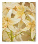 Lilycrest Dainties Fleece Blanket