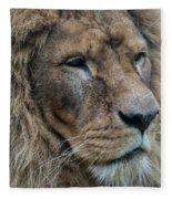 Lion Fleece Blanket