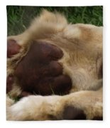 Lion's Feet Fleece Blanket