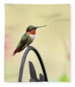 Little Hummingbird Fleece Blanket
