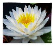Lotus Gold Fleece Blanket
