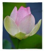 Lovely Soft Lotus Fleece Blanket