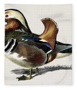 Mandarin Duck  Aix Galericulata Illustrated By Charles Dessalines D' Orbigny  1806-1876 1 Fleece Blanket