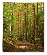 Meigs Creek Trailhead In Smoky Mountains National Park Fleece Blanket