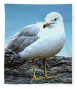 Moewe Seagull Fleece Blanket