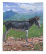 Mountain Donkey  Fleece Blanket