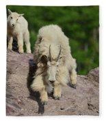 Mountain Goats- Nanny And Kid Fleece Blanket