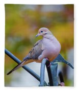 Mourning Dove Fleece Blanket