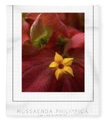 Mussaenda Philippica In Macro Poster Fleece Blanket