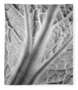Napa Cabbage 2816 Fleece Blanket