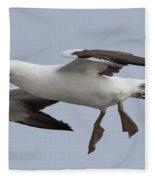 Nazca Booby Fleece Blanket
