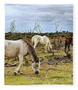 New Forest Ponies On The Heath Fleece Blanket