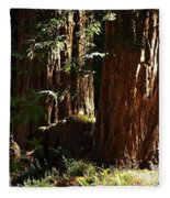 New Growth Redwoods Fleece Blanket